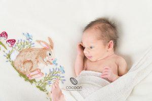 Introducing Edward – Adelaide Newborn Photographer