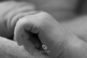 Introducing Imogen – Adelaide Newborn Photographer